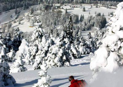 Chalet ski au pied
