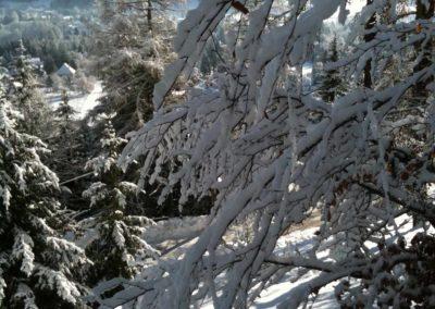 Location chalet Lans en Vercors vue montagne