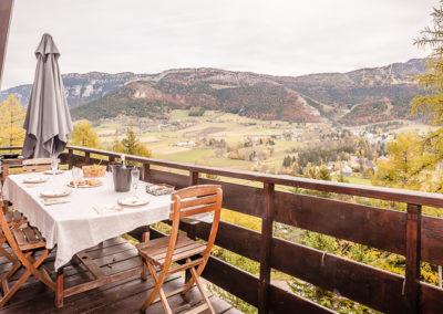 chalet avec vue et terrasse